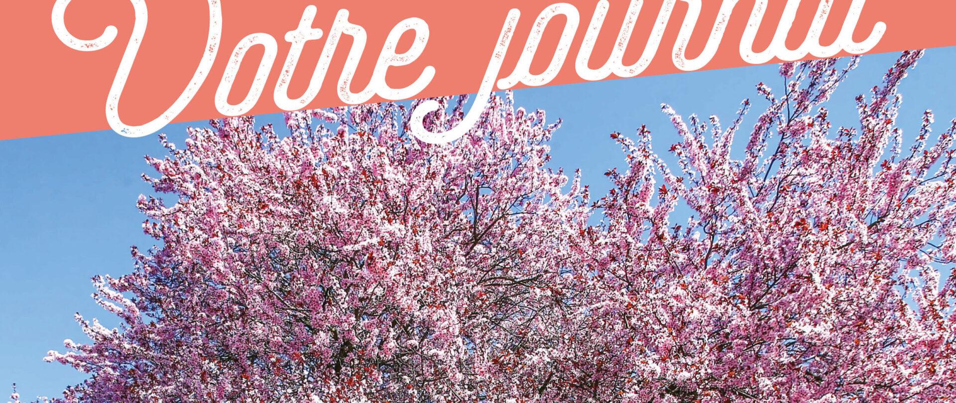 L'édition d'avril à juillet du journal municipal est disponible